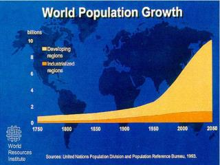 Population as a System