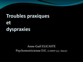 Troubles praxiques et dyspraxies