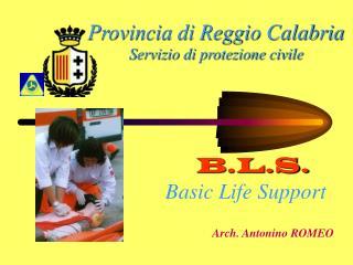 Provincia di Reggio Calabria Servizio di protezione civile