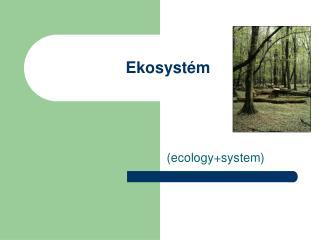 Ekosystém