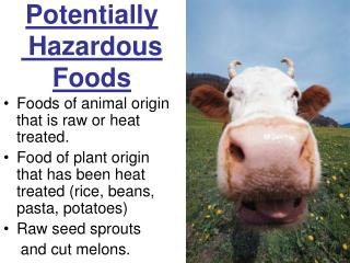 Potentially  Hazardous Foods