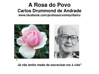 A Rosa do Povo Carlos Drummond de Andrade facebook/professorvolneyribeiro