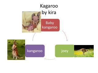 Kagaroo by  kira