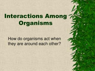 Interactions Among Organisms