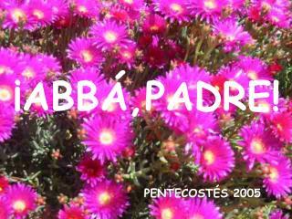 PENTECOSTÉS 2005