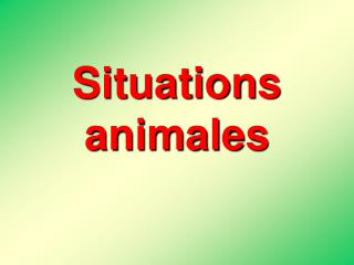 Situations animales