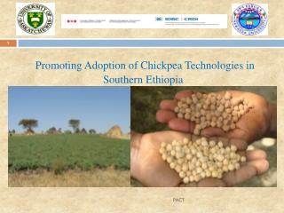 Promoting Adoption of Chickpea Technologies in Southern Ethiopia