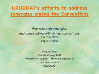 URUGUAY's efforts to address  synergies among the Conventions