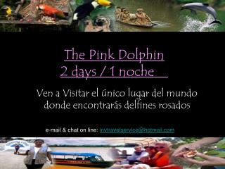 The Pink Dolphin   2 days / 1 noche