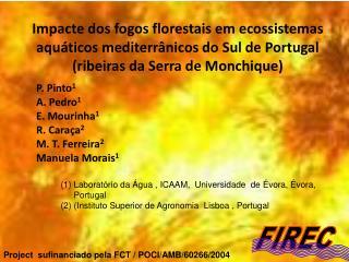 P. Pinto 1 A. Pedro 1 E. Mourinha 1 R. Caraça 2 M. T. Ferreira 2 Manuela Morais 1