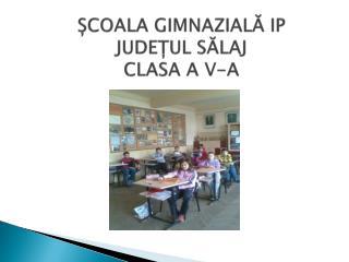 ȘCOALA GIMNAZIALĂ IP JUDEȚUL SĂLAJ CLASA A V-A