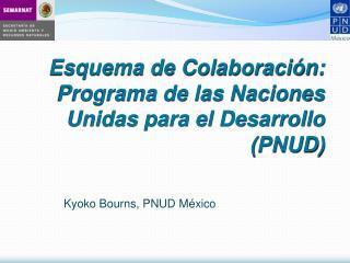 Esquema de Colaboraci�n: Programa de las Naciones Unidas para el Desarrollo (PNUD)