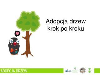 Adopcja drzew krok po kroku