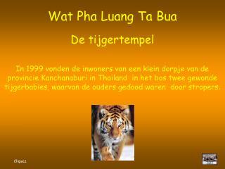 Wat Pha Luang Ta Bua De tijgertempel
