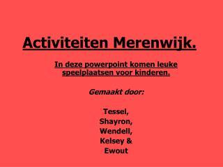 Activiteiten Merenwijk.