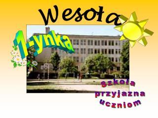 1-ynka