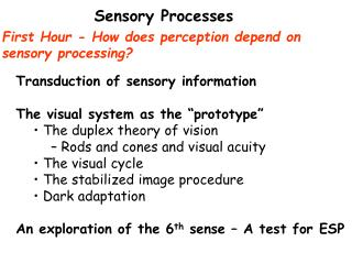 First Hour - How does perception depend on  sensory processing?