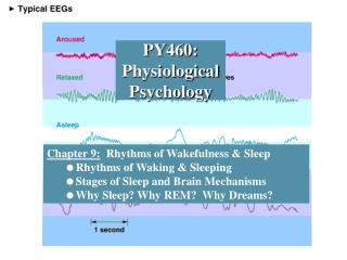 PY460:  Physiological Psychology