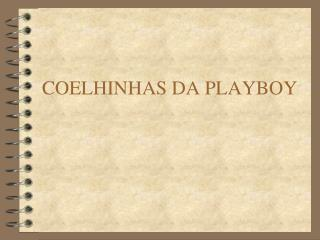 COELHINHAS DA PLAYBOY