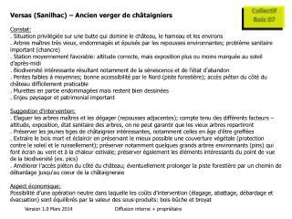 Versas (Sanilhac) – Ancien verger de châtaigniers Constat: