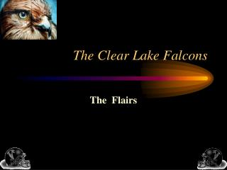 The Clear Lake Falcons