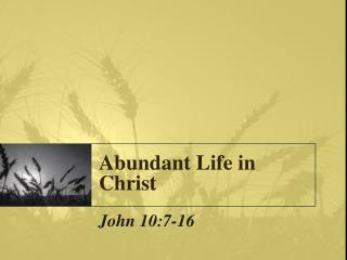 Abundant Life in Christ