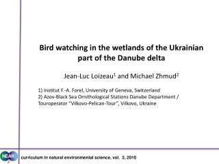 Bird watching in the wetlands of the Ukrainian part of the Danube delta