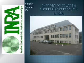 Rapport de stage en entreprise effectu� � l�INRA