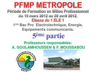 PFMP METROPOLE Période de Formation en Milieu Professionnel du 19 mars 2012 au 20 avril 2012.