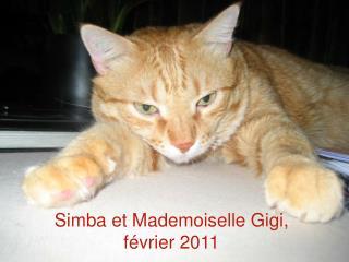 Simba et Mademoiselle Gigi, février 2011