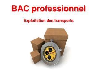 BAC professionnel  Exploitation des transports