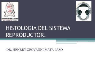 HISTOLOGIA DEL SISTEMA REPRODUCTOR.