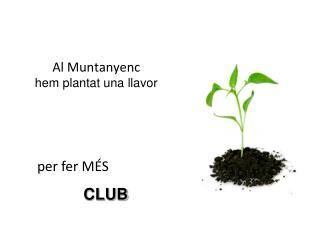 Al Muntanyenc hem plantat una llavor