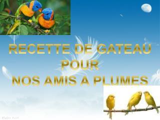 RECETTE DE GATEAU  POUR NOS AMIS A PLUMES