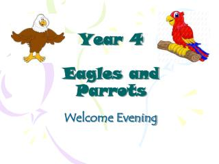 Year 4 Eagles and Parrots