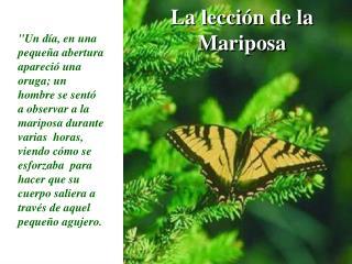 La lección de la Mariposa