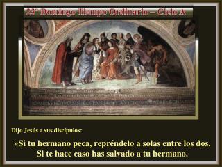 Dijo Jesús a sus discípulos: «Si tu hermano peca, repréndelo a solas entre los dos.