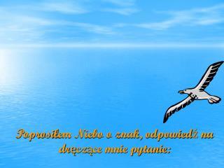 Poprosi ł em Niebo o znak, odpowied ź  na dr ę cz ą ce mnie pytanie: