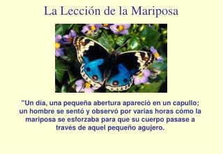 La Lecci�n de la Mariposa