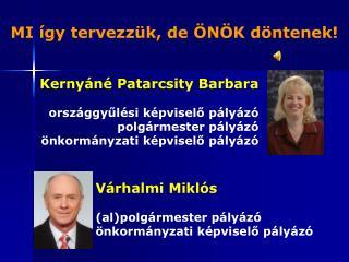 Kernyáné Patarcsity Barbara országgyűlési képviselő pályázó polgármester pályázó
