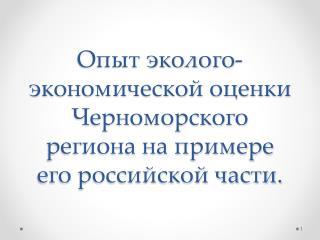 Опыт эколого-экономической оценки Черноморского региона на примере его российской части.