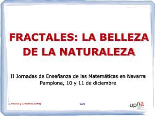 FRACTALES: LA BELLEZA DE LA NATURALEZA