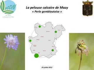 La pelouse calcaire de Mazy «Perle gembloutoise»