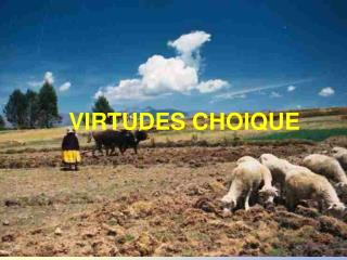 VIRTUDES CHOIQUE