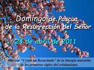 Domingo  de Pascua   de la Resurrección del Señor