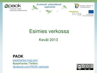 Esimies verkossa Kevät 2013