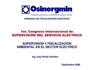 SUPERVISIÓN Y FISCALIZACIÓN AMBIENTAL EN EL SECTOR ELÉCTRICO