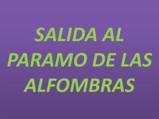 SALIDA AL PARAMO DE LAS ALFOMBRAS