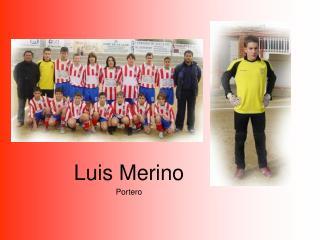 Luis Merino Portero