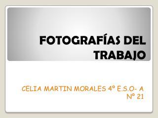 FOTOGRAFÍAS DEL TRABAJO